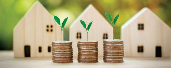 Subventions pour des rénos vertes : mieux penser vos projets